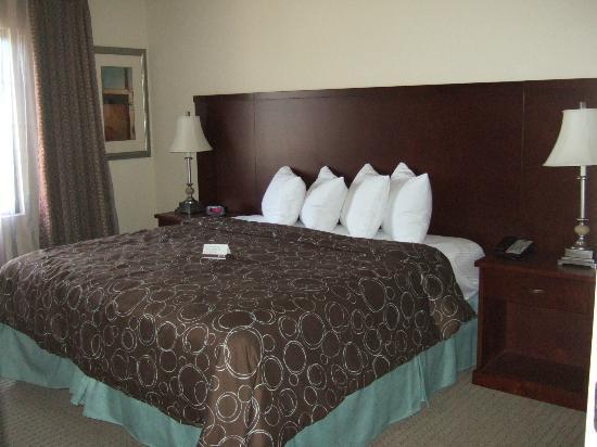 Staybridge Suites East Stroudsburg - Poconos : King Size Bed