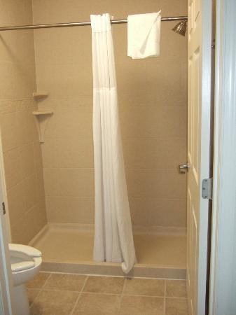 Staybridge Suites East Stroudsburg - Poconos: Shower