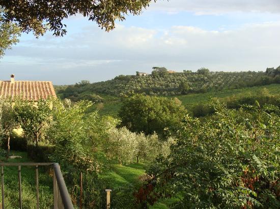 Agriturismo le Caggiole: Terrace view