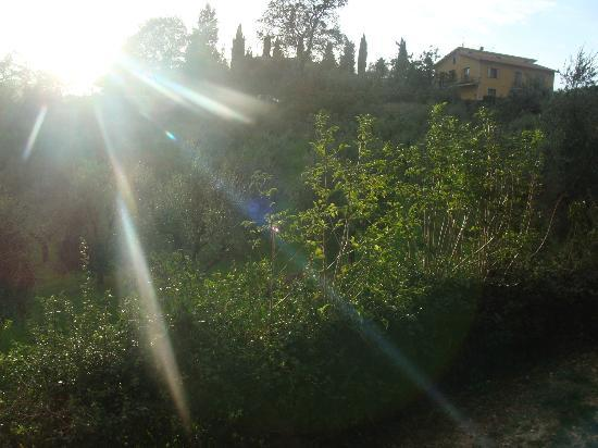 Agriturismo le Caggiole: Late afternoon sun on the terrace
