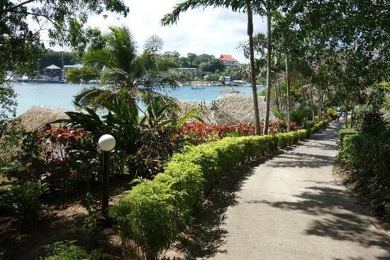 Iririki Island Resort: Hillside view pathway down to waterfront fares