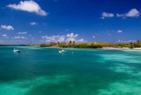 Mayan Riviera Tours- Day Tours: Contoy Island tour