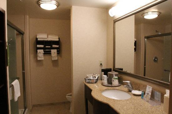 Hampton Inn & Suites Oakland Airport-Alameda: bathroom