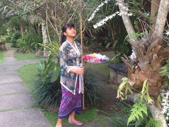Ananda Cottages: Picking flowers