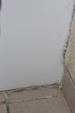 Ramada Plaza Albany: Schimmel im Bad - eine von vielen Ecken