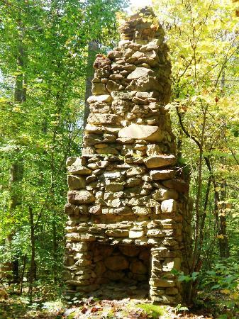 Troy, Северная Каролина: Old Chimney Remains