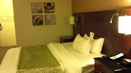Pittsburgh Marriott City Center: The comfy bed!
