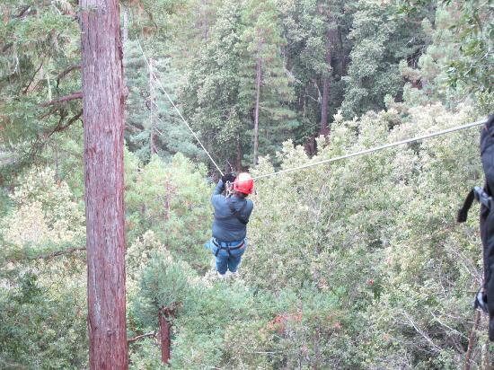 Sonoma Canopy Tours: FUN!!!