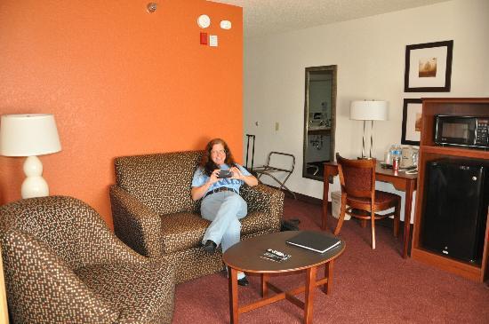 AmericInn Lodge & Suites White Bear Lake: Living Room
