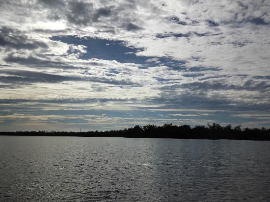 """J.N. """"Ding"""" Darling National Wildlife Refuge: kayaking in tarpon bay"""