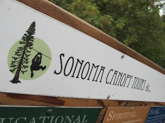 Sonoma Canopy Tours: what they are all about...