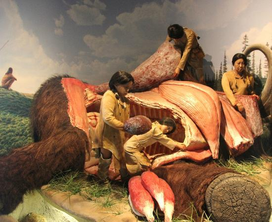 Kenosha Public Museum: Butchering a mammoth