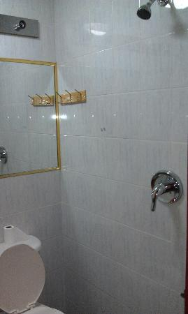 Windsor Hotel: Basement shared bathroom