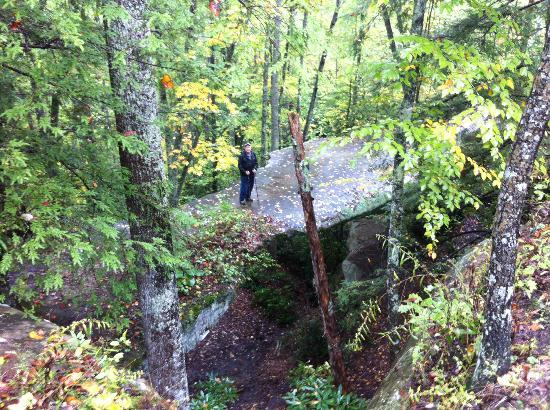 Pickett State Park and Forest: On the natural arch