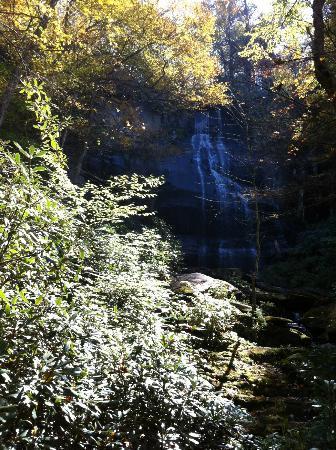Falls Branch Falls: The falls