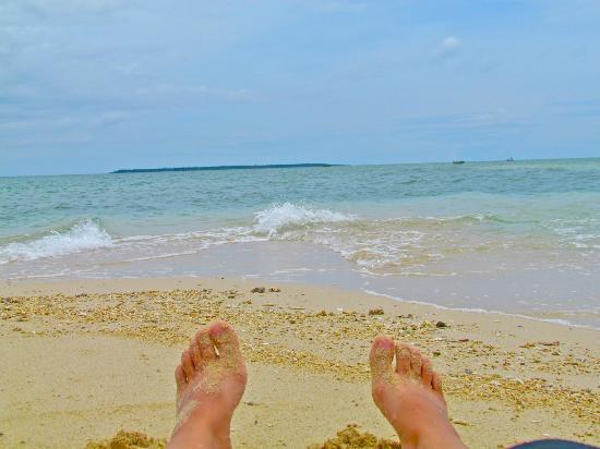 Dos Palmas Island Resort & Spa: Picnic Island