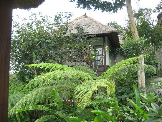 Amori Villas: Our Villla