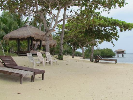 Dos Palmas Island Resort & Spa : beach