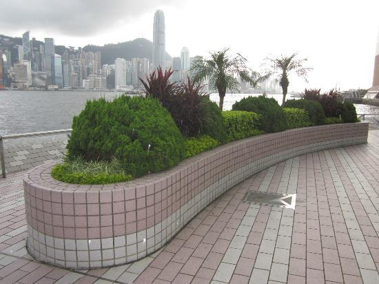 Tsim Sha Tsui Promenade: A view from the promenade...