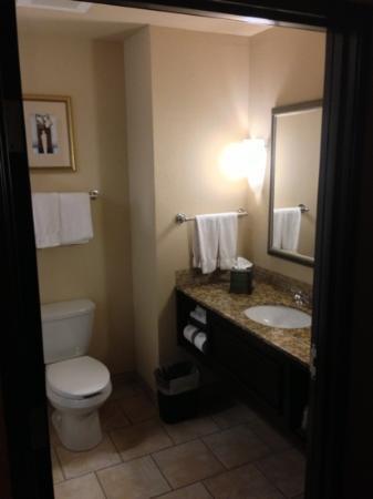 Holiday Inn Express Hotel & Suites Wichita Falls : bathroom (202)