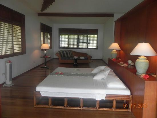 Badian Island Wellness Resort: room