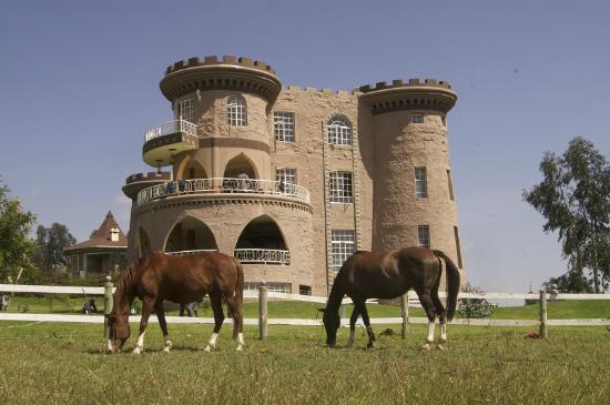 Tafaria Castle and Country Lodge: Castle