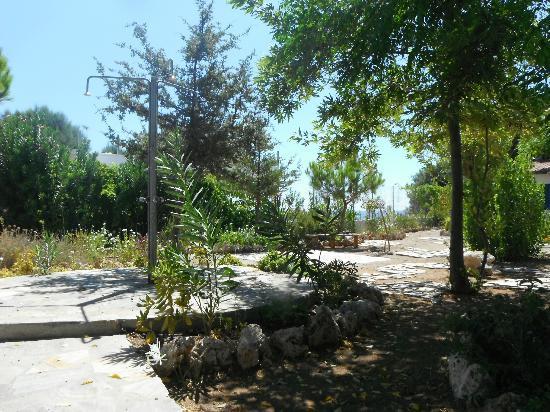 Mandorla Apartments: Garden view