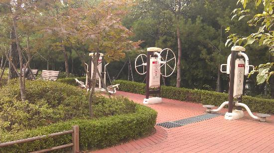 BEST WESTERN Premier Gangnam: Park up the street has some exercise equipment