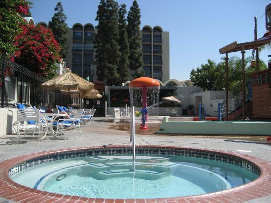 Howard Johnson Anaheim Hotel and Water Playground: hot tub