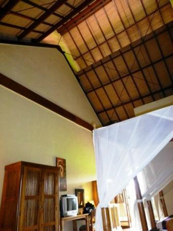 Junjungan Ubud Hotel and Spa: Room