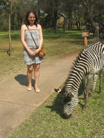 AVANI Victoria Falls Resort: Zambezi Sun