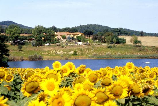 Residence Selvatellino: vista dal lago
