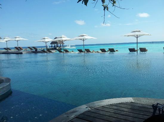 Anantara Kihavah Maldives Villas : The view from the bar infront of the main pool