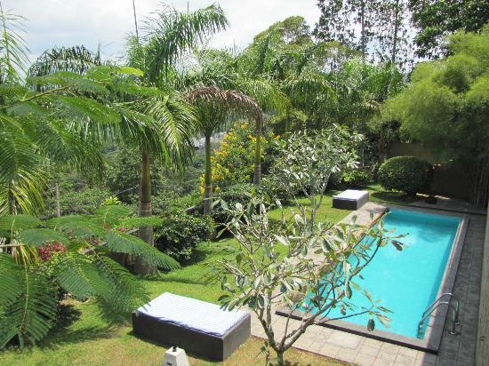 Baramba House: Pool area