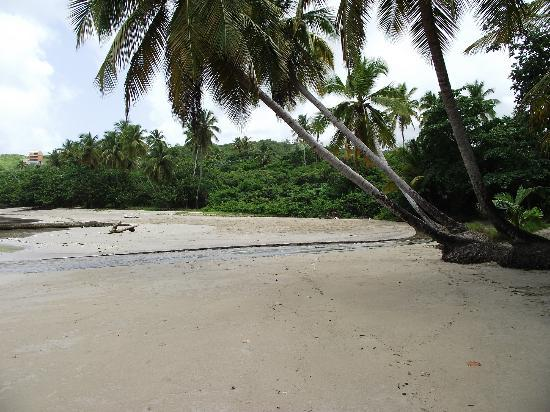 Coyaba Beach Resort: Deserted beach we found