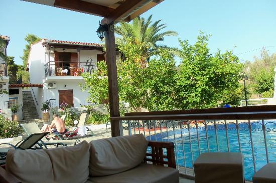 Villa Rosa Apartments: View from the pool bar