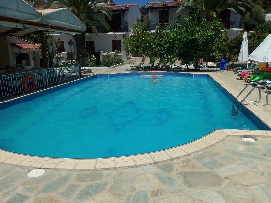Villa Rosa Apartments : Pool area