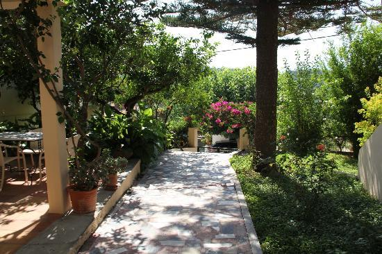 Hotel Orestis : The lovely gardens that greet you !
