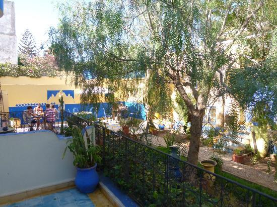 Villa Flora : le jardin