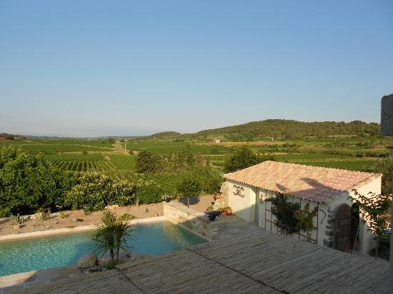 Domaine La Veronique: View from our room over the Vineyards