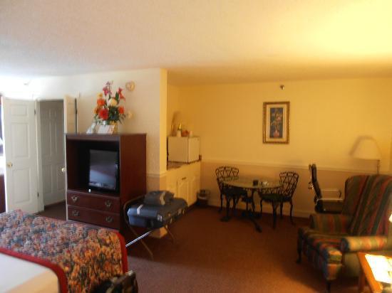 Chateau Louisianne Suite Hotel: Nice room...