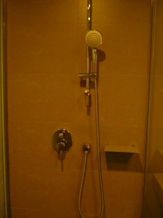 Novotel Bangkok Platinum Pratunam: Shower only