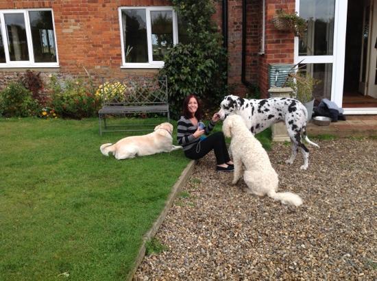 Manor Lodge: Doggy Heaven