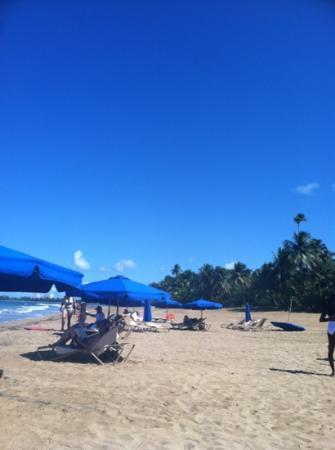 Wyndham Grand Rio Mar Beach Resort & Spa: Restorative beach! Free beach chairs!