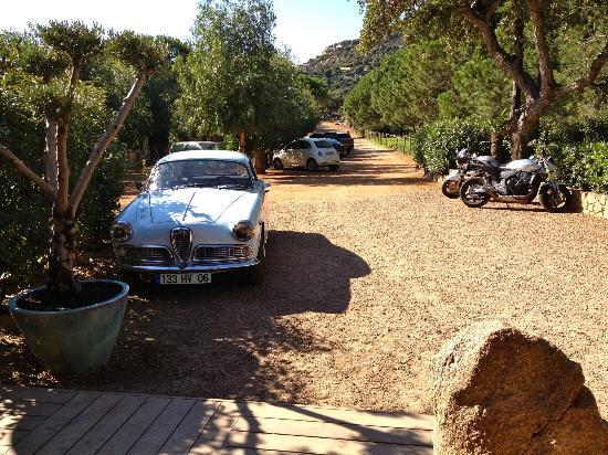 Tamaricciu : Entree met classic Alfa!