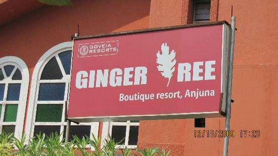 Ginger Tree Boutique Anjuna: Hotel Entrance