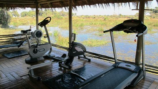 Wilderness Safaris Mombo Camp: a gym with a view