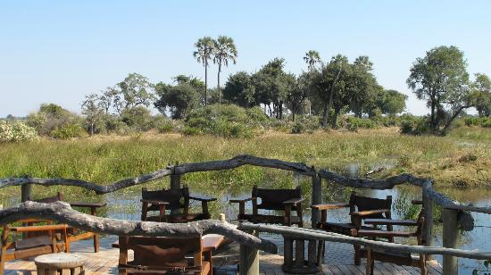 Wilderness Safaris Mombo Camp: Mombo lounge
