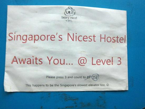 Beary Nice! by a beary good hostel: Singapore's slowest elevator