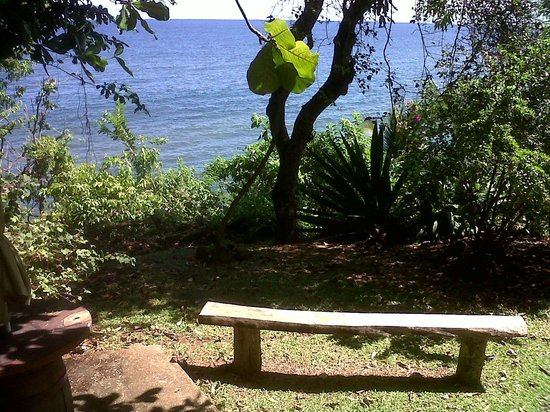 View of the ocean from the dining verandah at Shore Things cafe - cool and shady spot